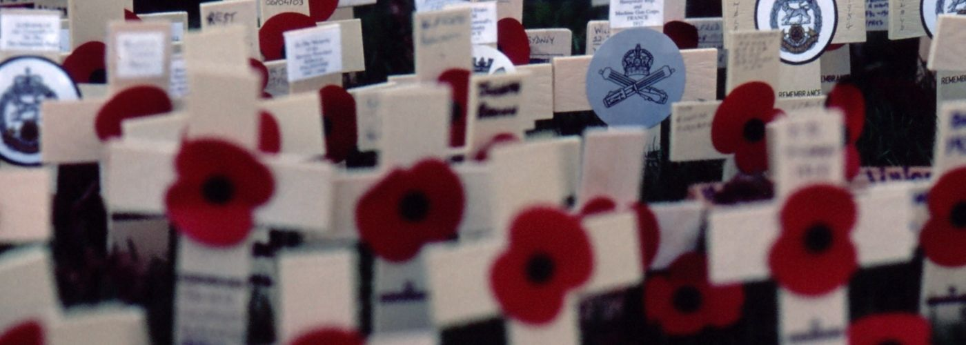 Poppies on crosses for Remembrance Day