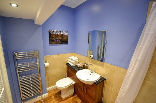 Premier room basin and toilet