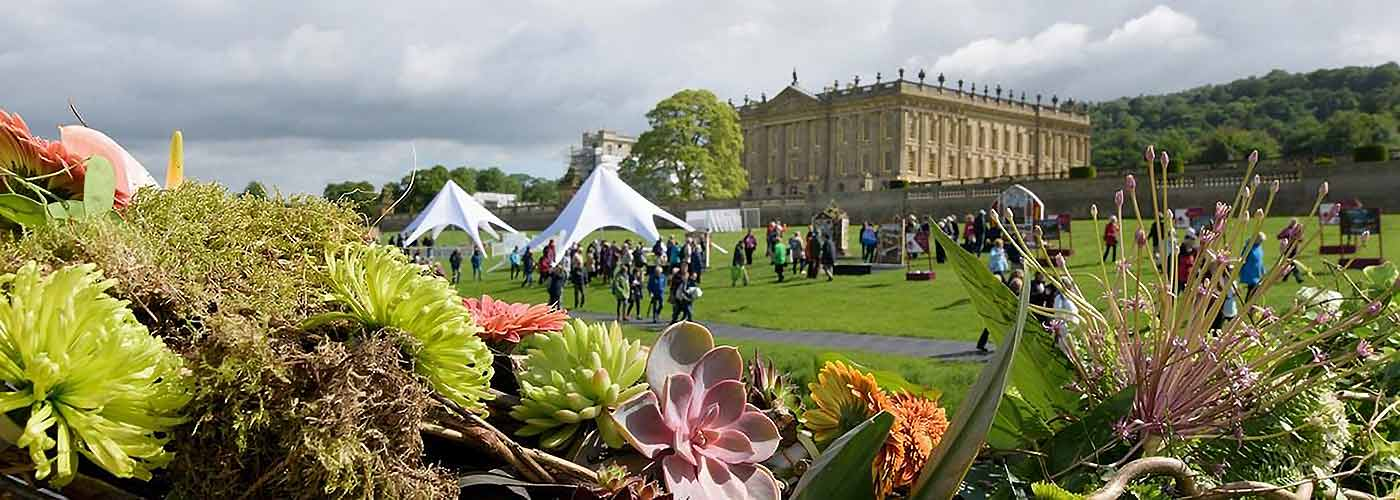 View across flowers to the RHS Chatsworth flower show