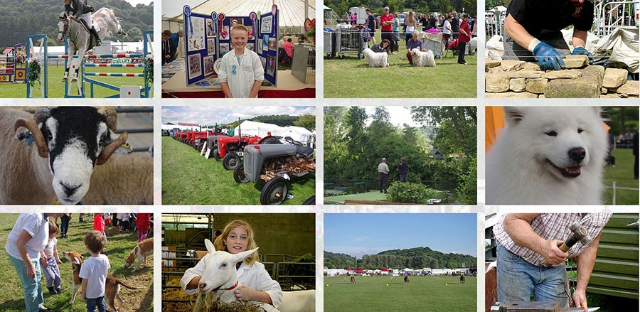 Images from the Bakewell show, 2017