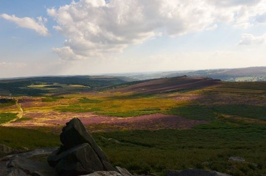 Views across the Peak District with purple heather